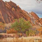 """Roxborough Rocks"" 18 x 24 A wild apple tree and rock formation in Roxborough State Park, Colorado"